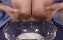 Asian lactating tits